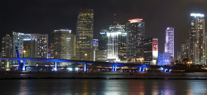 Josh Procacci icon miami skyline at night