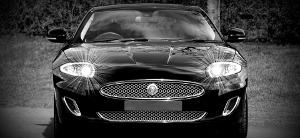Digitizing Car Buying icon jaguar in black